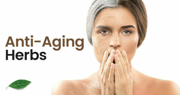 10 Best Anti-Ageing Herbs in India to Look Younger and Beautiful