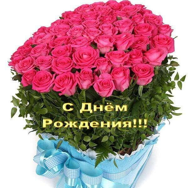Много роз на день рождения