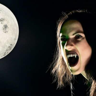 стать вампиром