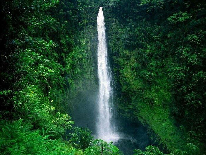 На водопад