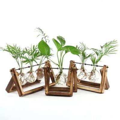 Подставка с колбами для растений (или мини-флорариум)