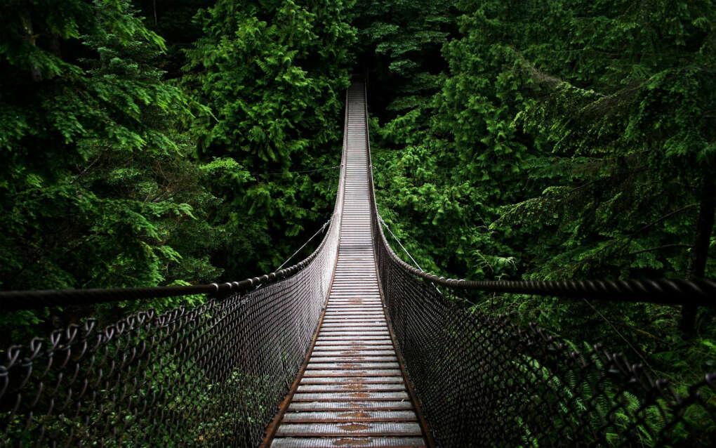 Пройтись по верёвочному мосту
