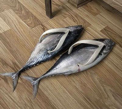 Сланцы-рыбки