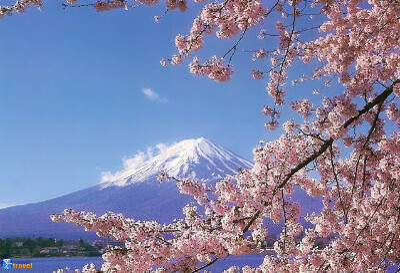 Хочу посетить Японию