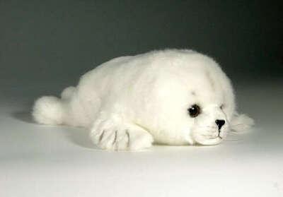 Плюшевый тюлень