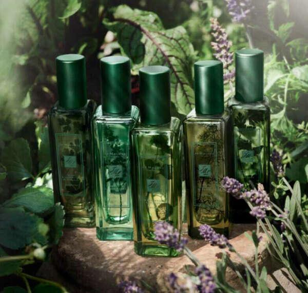 JO MALONE Lavender & Coriander
