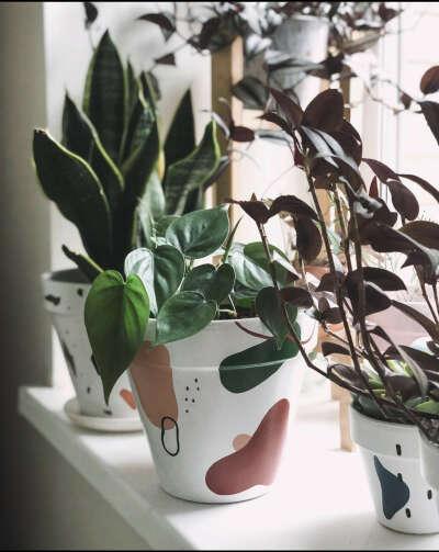 Горшок цветочный дизайна sababa.pots