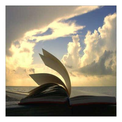 Выучить 100 стихотворений до конца года