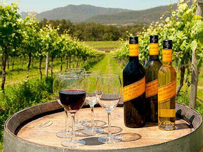Wine tour in Hunter Valley, Australia