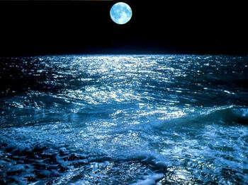 Искупаться ночью в море
