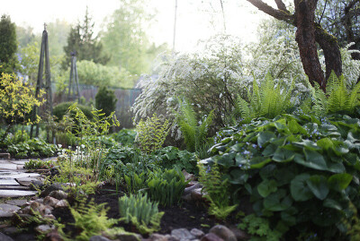 Свой сад