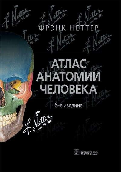 анатомический атлас