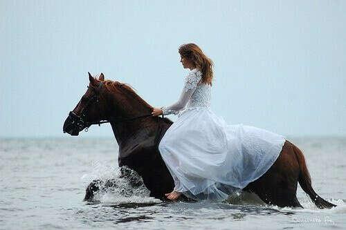 Фотосессию с лошадью