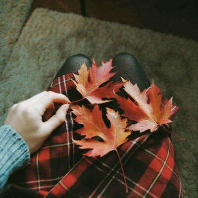 Разрисовать листья