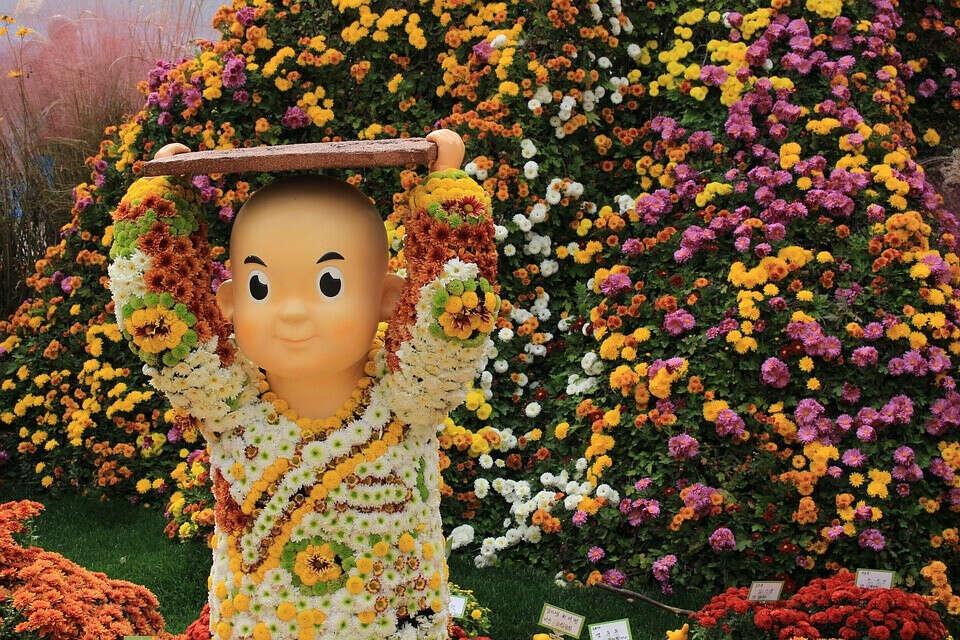 Фестиваль хризантем в Сеуле
