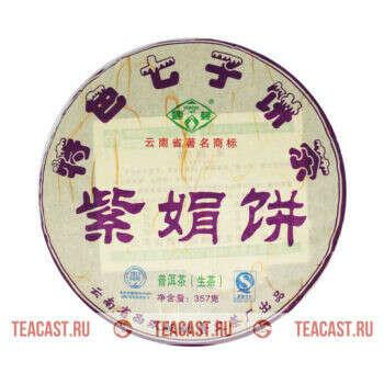Пу Вэнь «Цзы Чжуань Бин»
