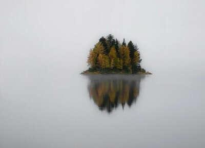 Увидеть остров на озере в Национальном парке Паанаярви (Карелия, Россия) своими глазами.