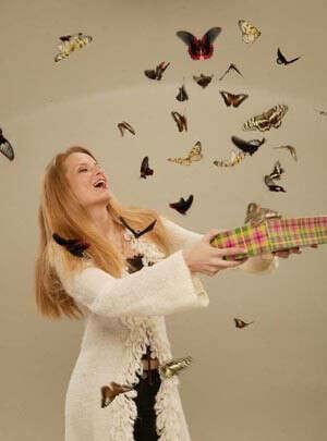 Коробку с живыми бабочками