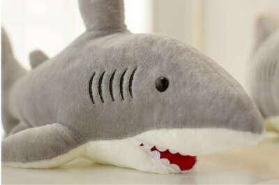 Плюшевая акула