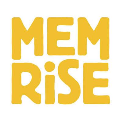 Годовая подписка на Memrise