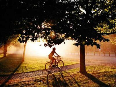 совершать велопрогулки по городу