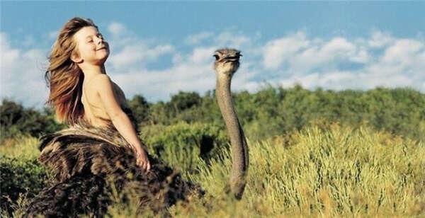 Покататься на страусе