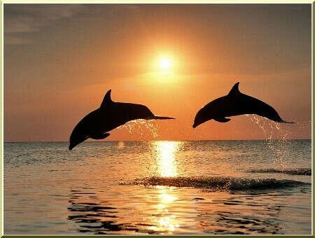 Хочу отдохнуть на море