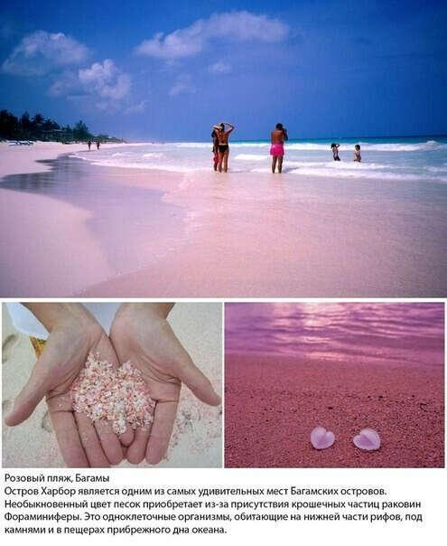 отдых на розовом пляжу