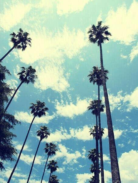 Жить в Лос-Анджелесе