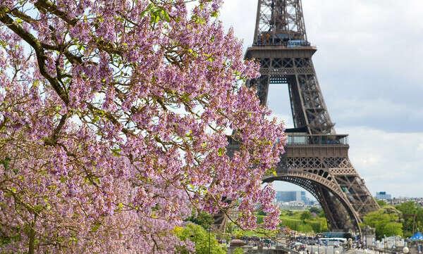 Весну в Париже