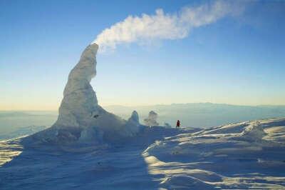 Побывать в Антарктиде