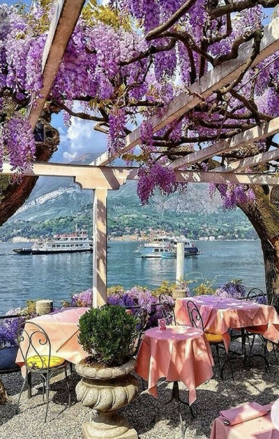 Завтрак в Италии, где цветут глицинии