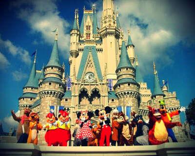 Поехать в Disneyland