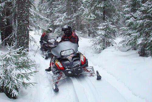 Покататься на снегоходе!