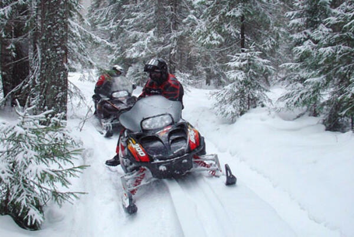 В лес или горы на снегоходе
