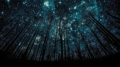 Лежать под звездным небом