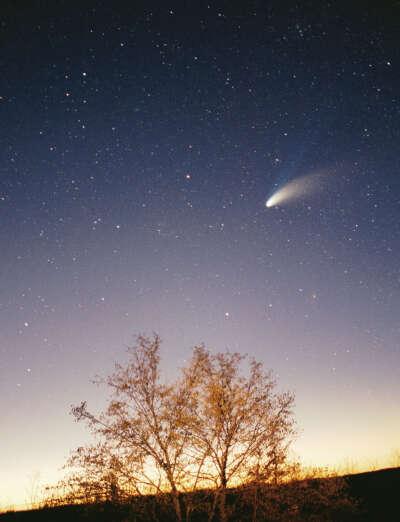 Cфотографировать комету