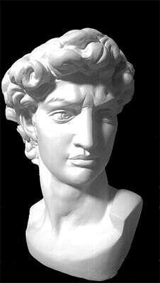 Гипсовая голова Давид Микеланджело гипс Давид Микеланджело 10-123 купить за 1880,00 руб. в интернет-магазине Леонардо