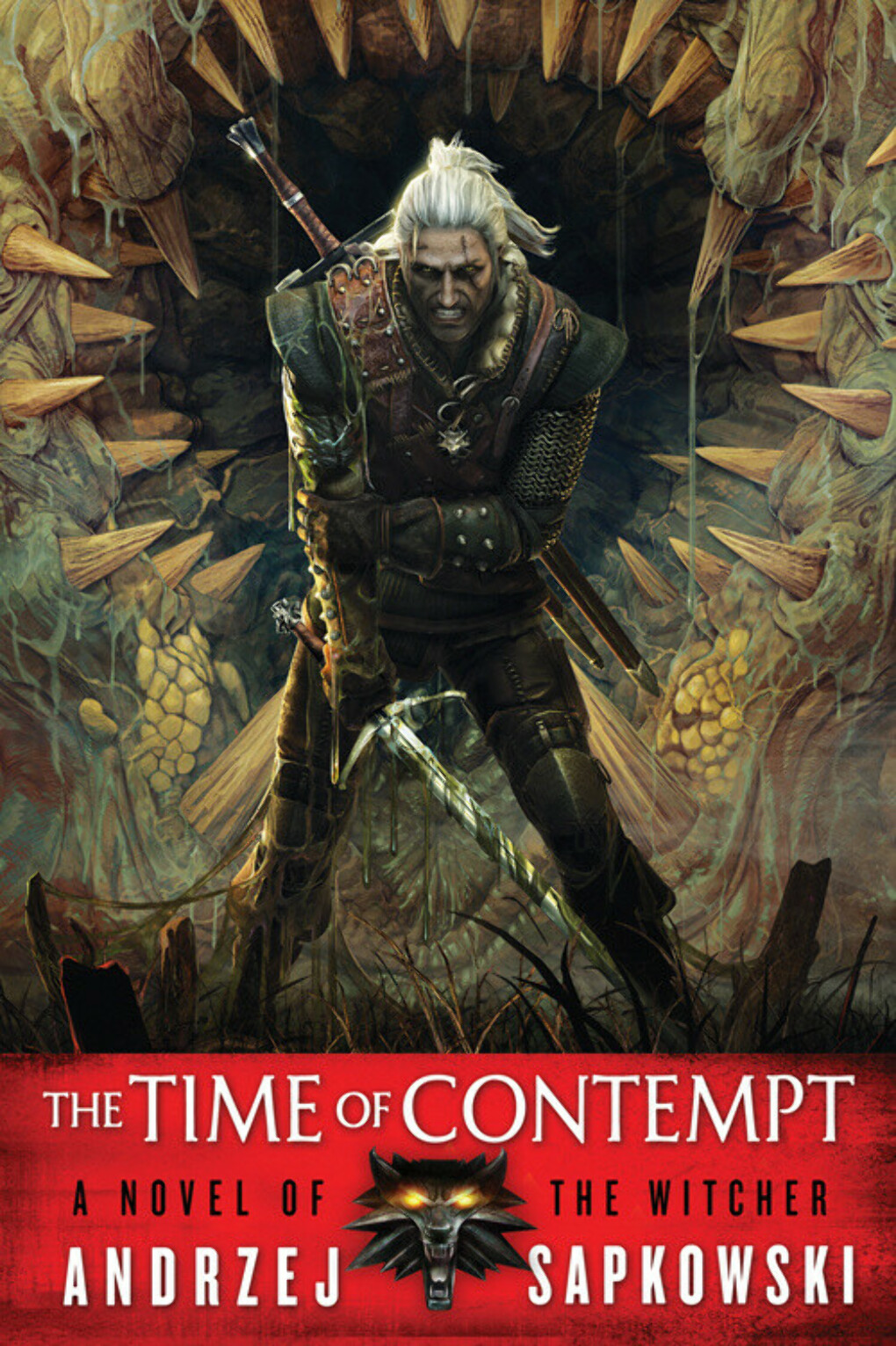 The Witcher The Time of Contempt