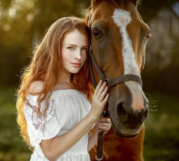 Завести лошадь