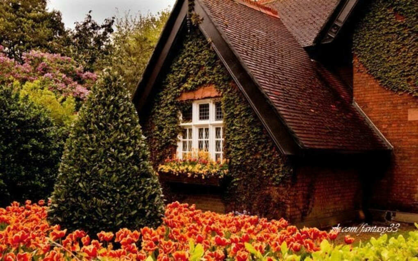 домик в Одессе