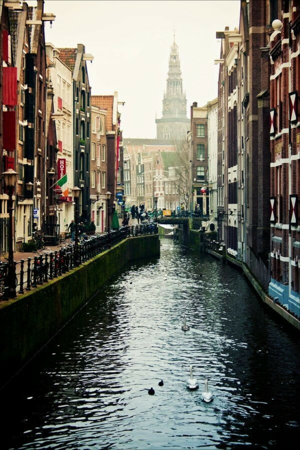 Побывать в Амстердаме