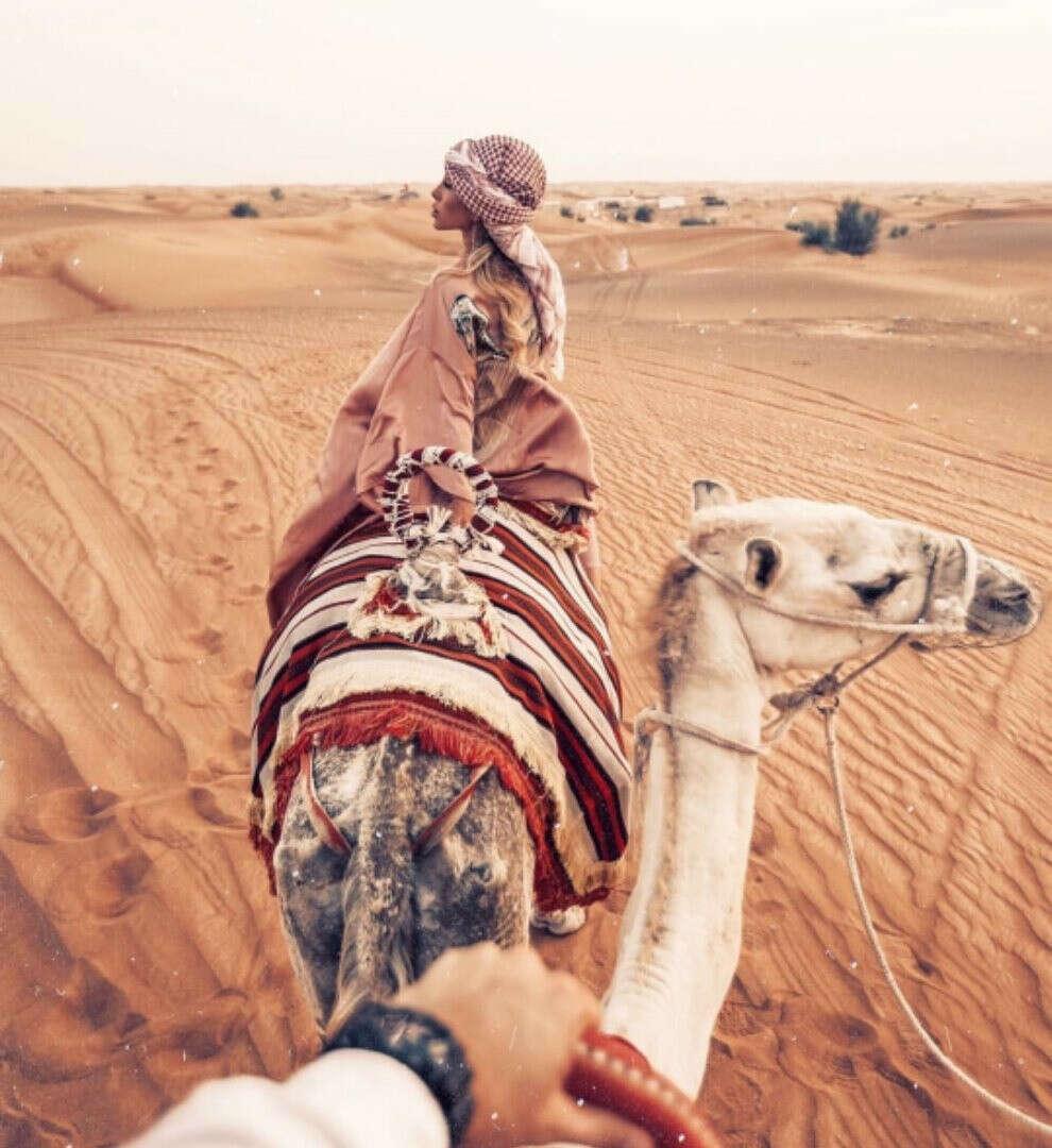 Поехать на верблюдах в пустыню