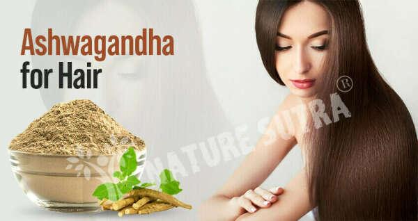 Ashwagandha For Hair: How To Use Ashwagandha For Hair Growth?