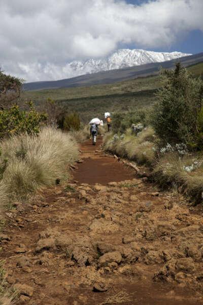 Восхождение на Килиманджаро (5 895 м) Тур в Танзанию, Африка.