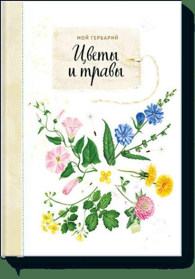 Мой гербарий. Цветы и травы (Анна Васильева, Светлана Винникова) — купить в МИФе