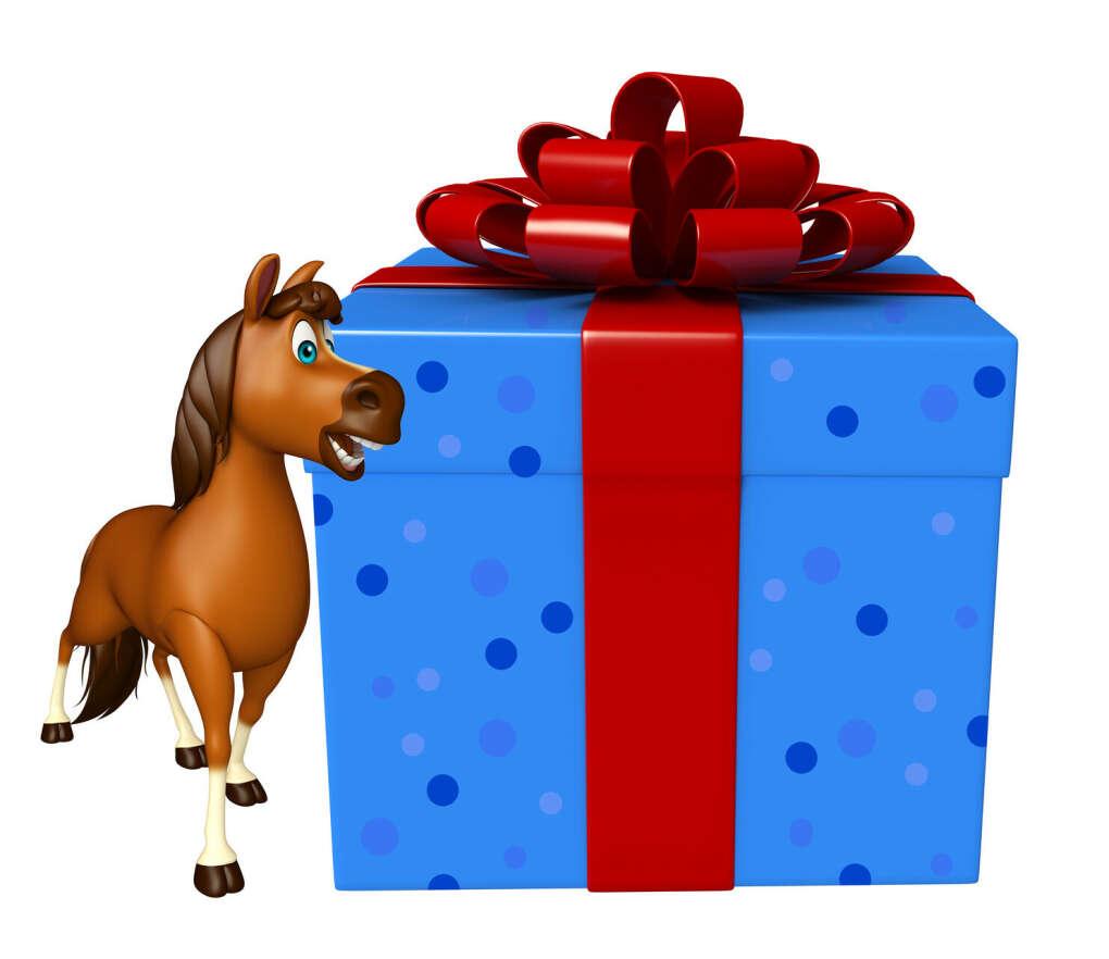 Подарочные коробки для конников и их любимцев