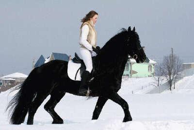 Покататься на лошади