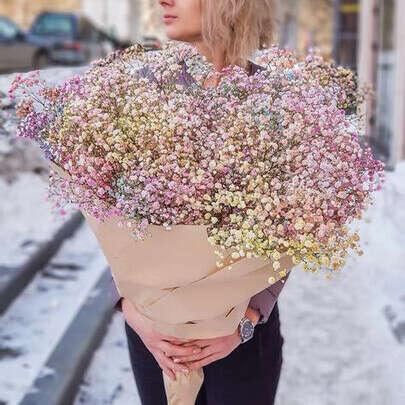 Цветы гипсофила радужная