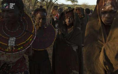 Побывать в Африке
